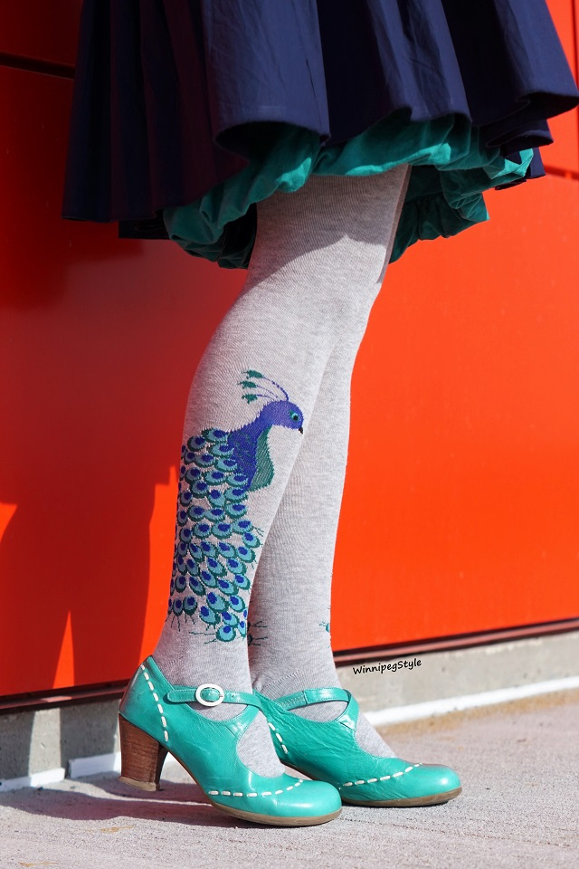 Winnipeg Style, Canadian Fashion blog, Stylist, Tabbisocks over the knee peacock print socks, grey blue, INC International Concepts bubble hem turquoise dress, Fluevog turquoise Malibran Operetta