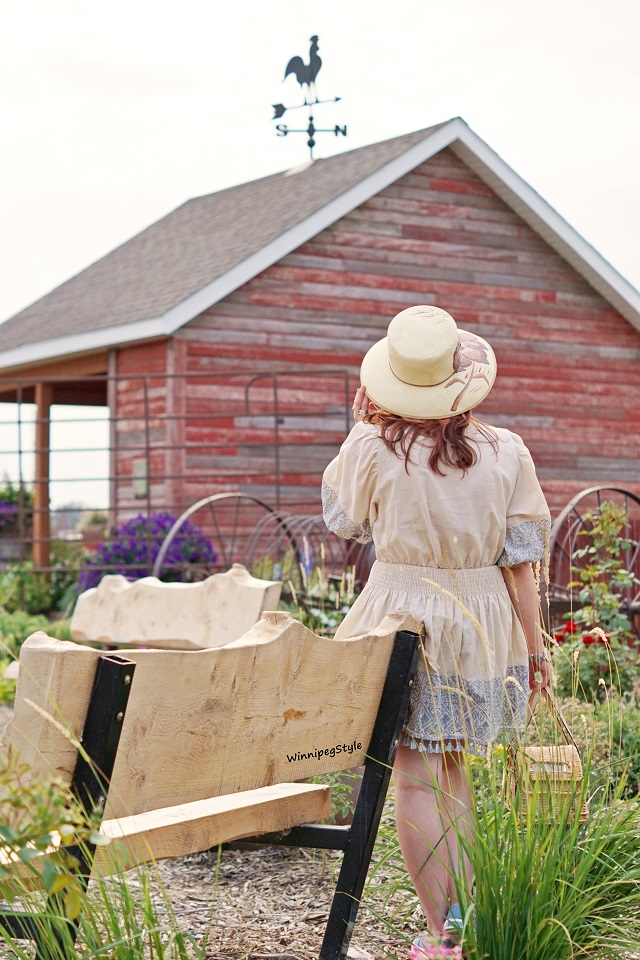 Winnipeg Style, fashion styist, Canadian blogger, Chicwish boho embroidered dress, Kate Spade New York wicker car purse bag, road trip Summer Fall 2018, Complit Italitan straw hat, Aldo denim embellished sneakers, Winkler Manitoba flower garden park, retro vintage cars trucks bikes, country chic, Parkside Pioneer Patch, Winkler, Manitoba